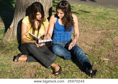 Dialogue of two students in park