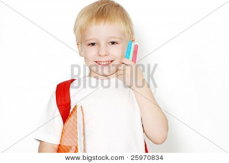 The little schoolboy on a light background