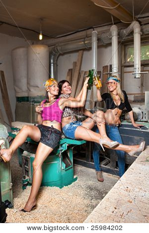 Portrait sexy girls in the carpentry shop carpenters