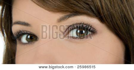 Beautiful brown eyes looking you