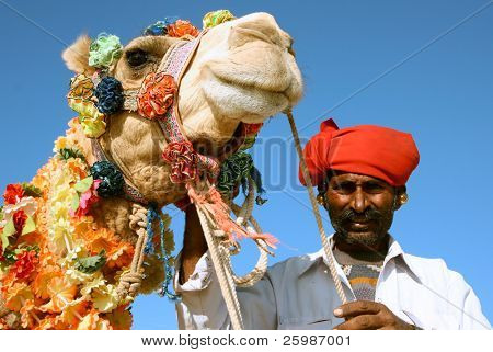Head of a camel on safari - desert,  India