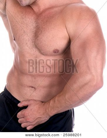 Athletic sexy male body builder. The champion in a fitness center.