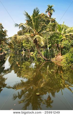 Exciting journey through the backwaters of Kerela, India