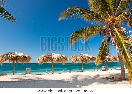 Caribbean Island Paradise - Palm trees hanging over a sandy white beach with stunning turquoise waters, Cuba