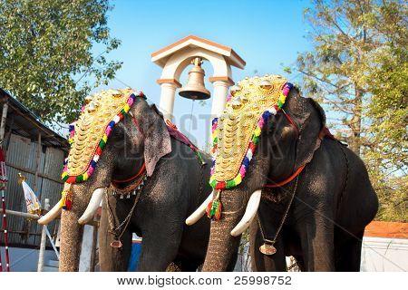 Dekoriert Elefanten Parade beim jährlichen Festival in Siva Tempel, Cochin, Indien