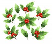 Christmas Holly Branches Realistic Illustrations Set. Holly Tree Twigs With Green Leaves And Red Ber poster