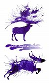 Wild Hoofed Animals. The Deer And The Wild Bull. Natural Cliparts For Wedding Design, Artistic Creat poster