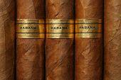 Постер, плакат: Гавана сигары текстуры
