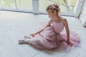 Young Classical Ballet Dancer Girl In Dance Class. Beautiful Graceful Ballerina In Pink Tutu Skirt P poster