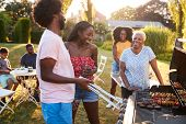 Adults talking at a multi generation family barbecue poster