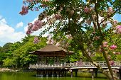 Постер, плакат: Красивая деревянная беседка над озером в городе Нара Япония