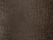 pic of alligators  - Synthetic faux alligator skin from a cover of an old photo album - JPG