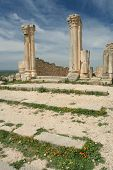 Part of UNESCO world heritage, great destination for tourists - Volublis, ruins of ancient roman city poster