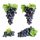 Set With Juicy Ripe Grapes On White Background poster