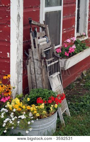 Beat Up Old Shed And Flowers