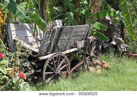 Antigo carrinho de vindima