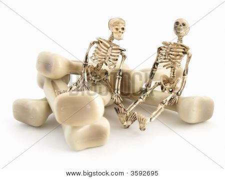 Mr And Mrs Bones