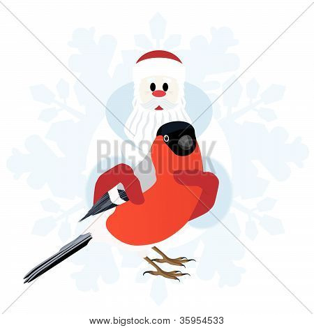 Bullfinch in the hands of Santa Claus