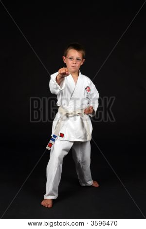 Traditional Karate Right Stance With A Punch Demonstrated