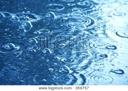 Rain Water Droplets
