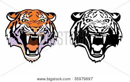 Cabeza del tigre