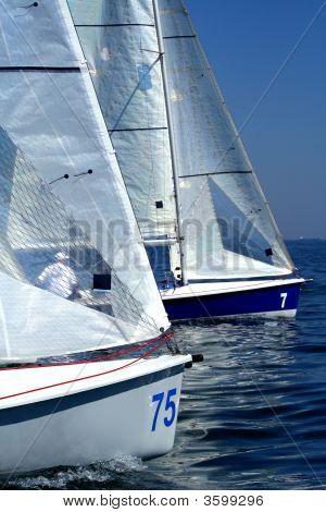 Start Of Sailing Race / Yahting