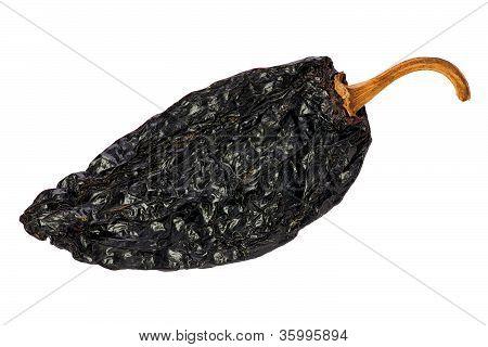 Ancho Chili (capsicum Annuum)