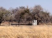 picture of bosveld  - Bushveld Bow Hunters Hideout at Feeding Area - JPG