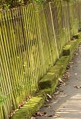 stock photo of split rail fence  - Old neglected park fence covered in moss - JPG
