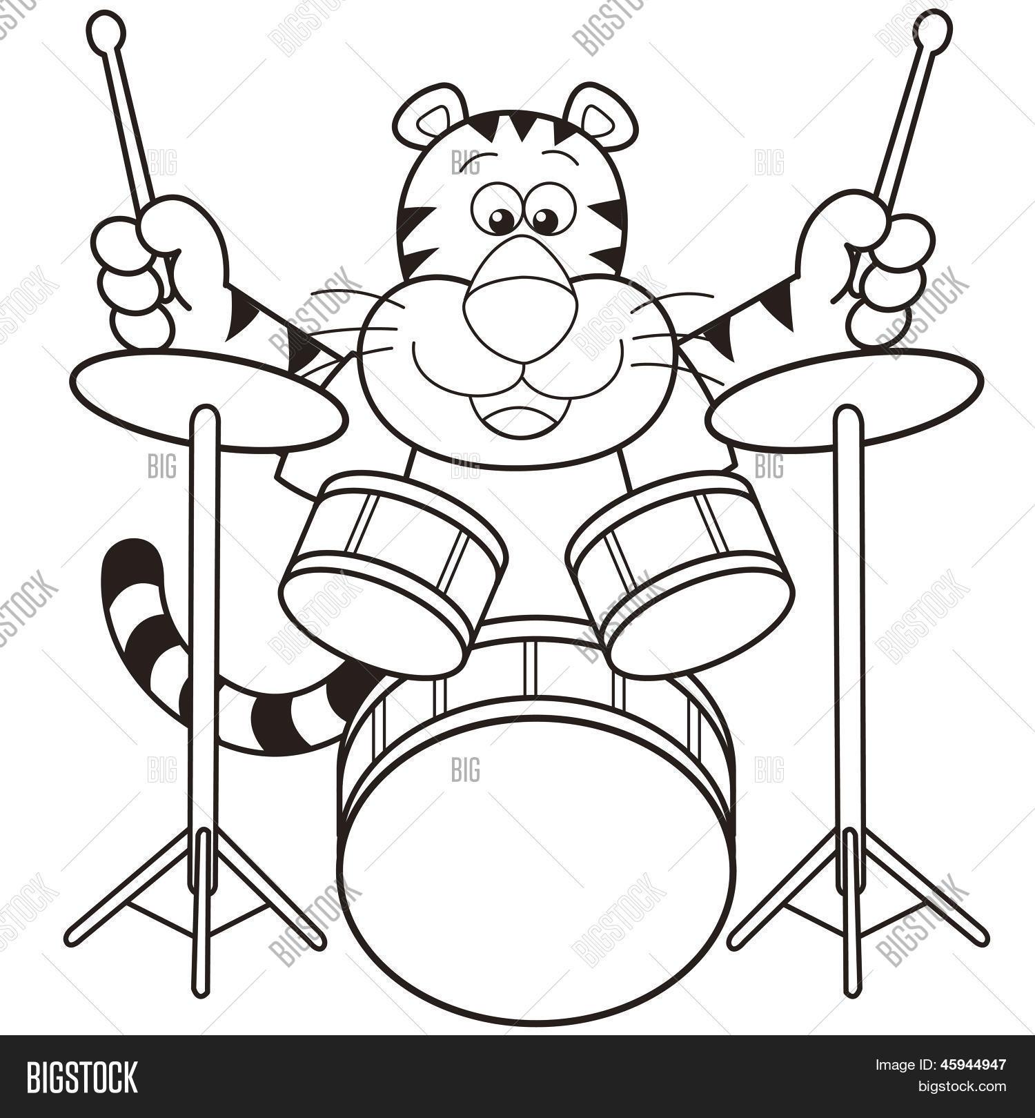 cartoon tiger playing drums vector u0026 photo bigstock
