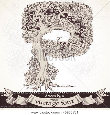 Fable forest hand drawn by a vintage font - P