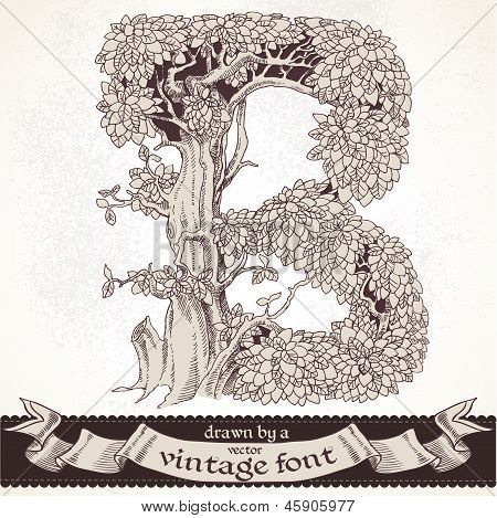 Fable forest hand drawn by a vintage font - B
