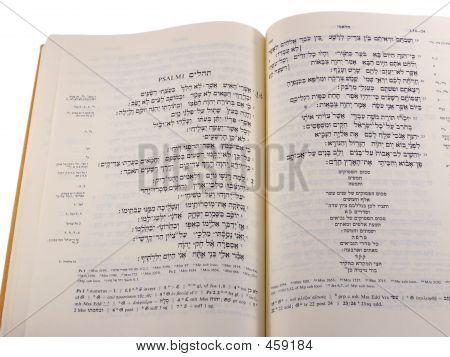 Hebrew Bible - Psalms