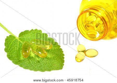 fish oil capsules on sage leaf