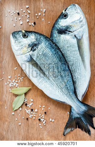 Fresh dorada fish with sea salt and bay leaf