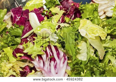Closeup Of Mixed Salad Lettuce