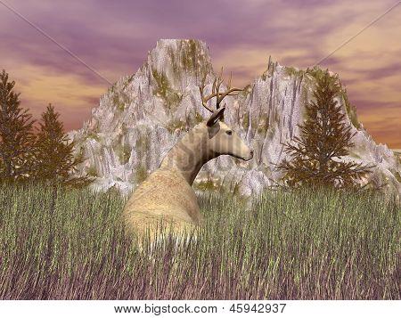 Vigilant Burk - 3D Render