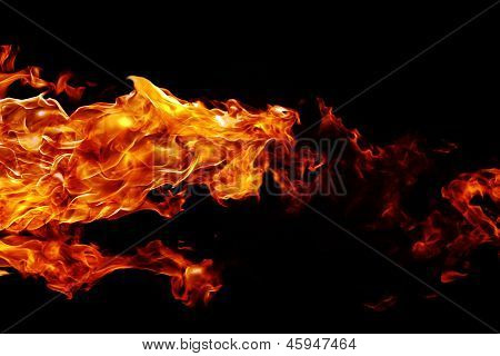 Silhouette Of A Mystical Animal On Fire