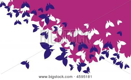 Background_butterfly.eps