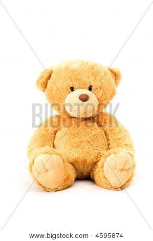 Sitting Bear Toy