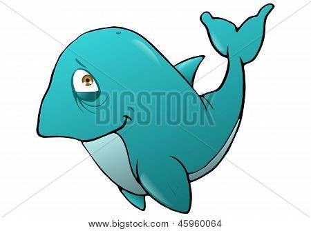 Smiling Whale