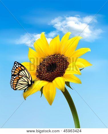Flor de verão girassol natureza com borboleta. Ilustração vetorial.