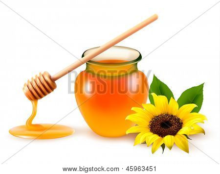 Jar of honey and a dipstick with yellow flower. Vector illustration.