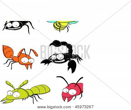 Insect pests at home