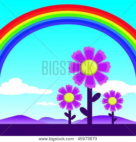 Rainbow and cosmos flowers