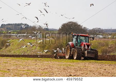Ploughing Agricultural Field