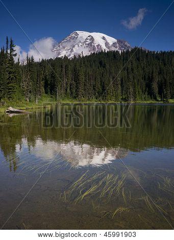 Vertical Composition Mt. Rainier Mirrored Reflction Lake Cascade Range Washington