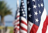 stock photo of veterans  - American flags lined up and vanishing in the horizon - JPG