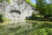 picture of shiting  - Dying lion monument in Lucerne  - JPG