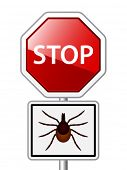 picture of ixodes  - vector Ixodes ricinus tick road stop sign - JPG